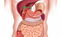 Comment le stress affecte votre intestin et que est le remède ?